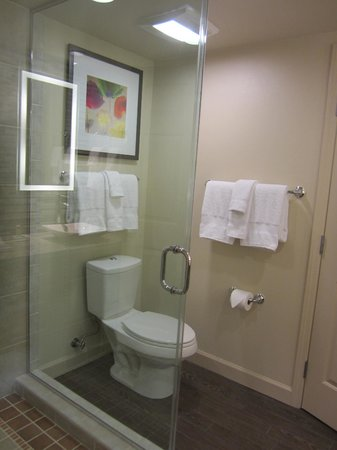 Marriott's Shadow Ridge II- The Enclaves: Glass shower and toilet area