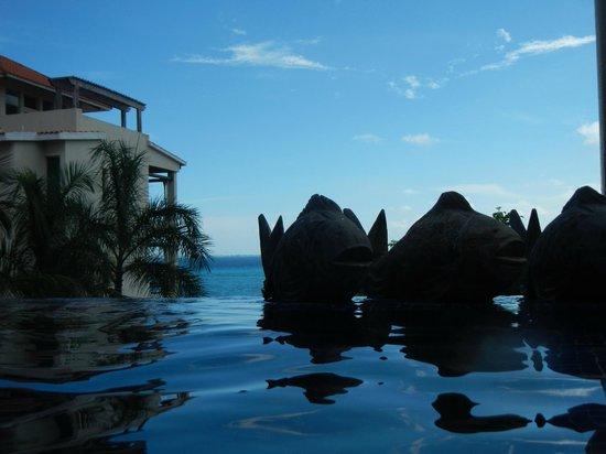 Casa de los Suenos : Another view of the pool