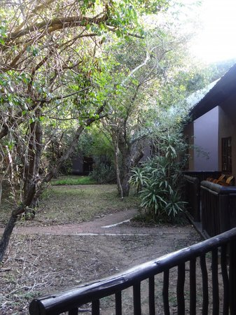 Emdoneni Lodge : Beautiful bush feel