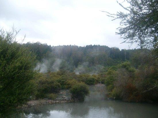 Whakarewarewa: The Living Maori Village: Amazing