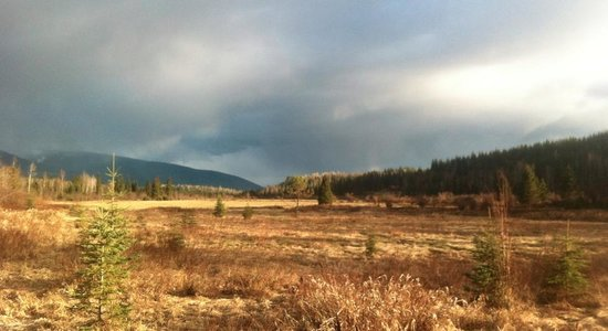 Clearwater Springs Ranch: View from walk around the meadow
