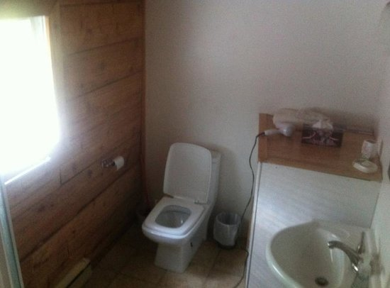 Clearwater Springs Ranch: Bathroom - shower has multiple jets