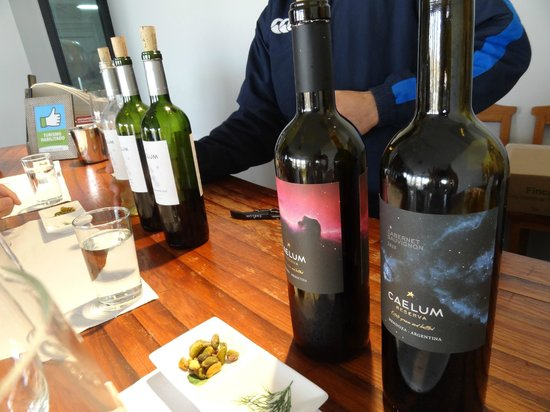 Argentina Wine Tours : Great tasting at Caelem that included their pistachios!