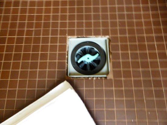 Rome Times Hotel: Open drain in shower