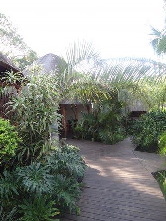 Lodge Afrique : Garden