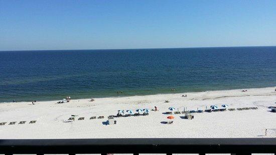Hampton Inn & Suites Orange Beach: Room 608 View
