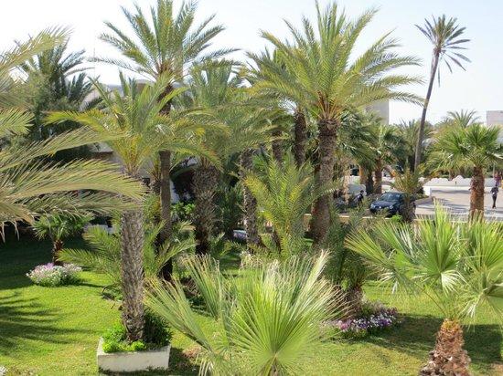 Club Marmara Narjess: Le parc de l'hôtel