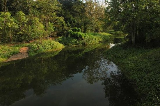 Buduruwagala Temple: River flowing by the temple