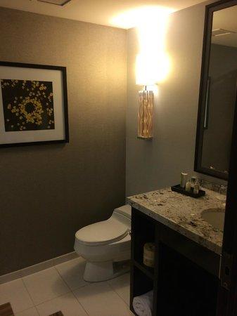 Cactus Petes Resort Casino : bathroom