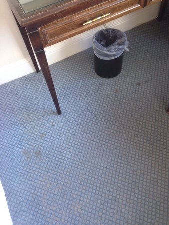 Tara Towers Hotel: Disgusting Carpet !