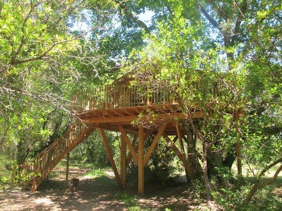 Lo Rey du Lac: cabane de 27 m² dans un superbe chêne