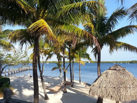 Coconut Palm Inn: Hammocks