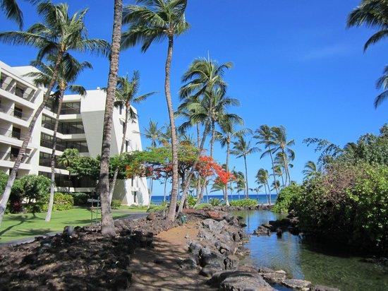 Mauna Lani Bay Hotel & Bungalows: hotel