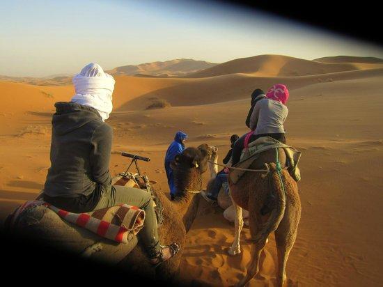 Morocco Trips 4 You : desert