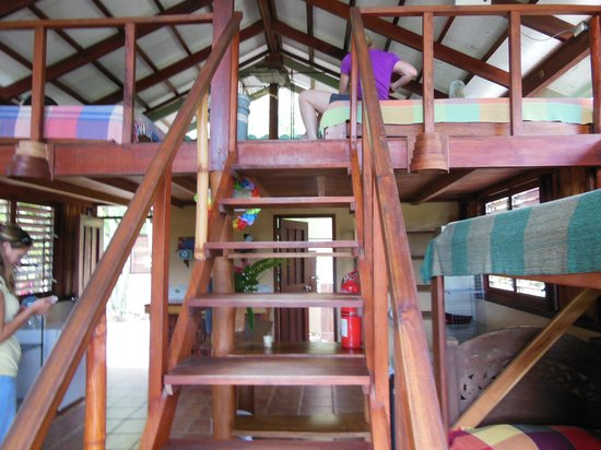 Funky Monkey Lodge: Shared rooms