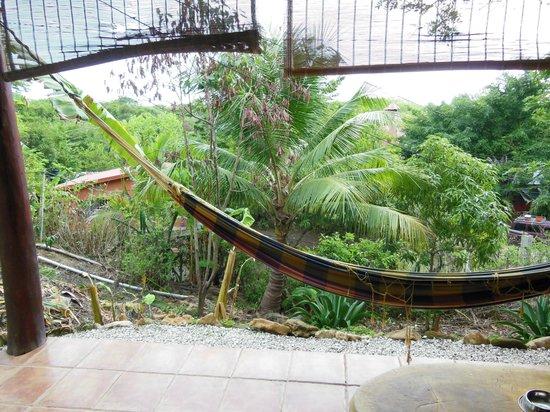 Funky Monkey Lodge: patio