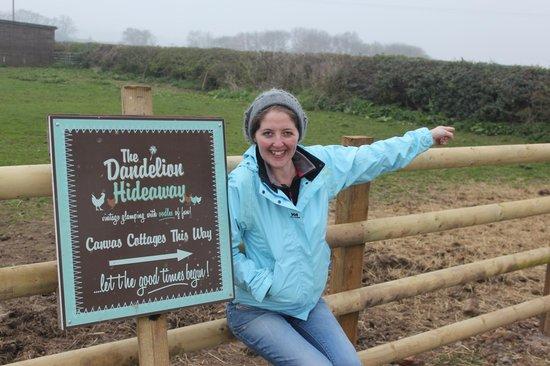 The Dandelion Hideaway: Fun times this way