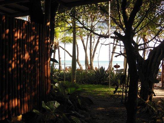 Hotel Tropico Latino: property
