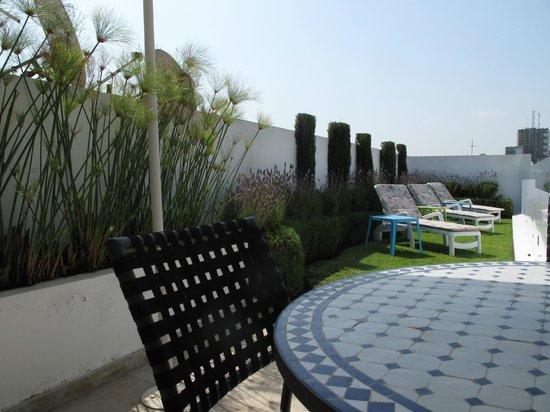 Riad Zyo : La terrasse
