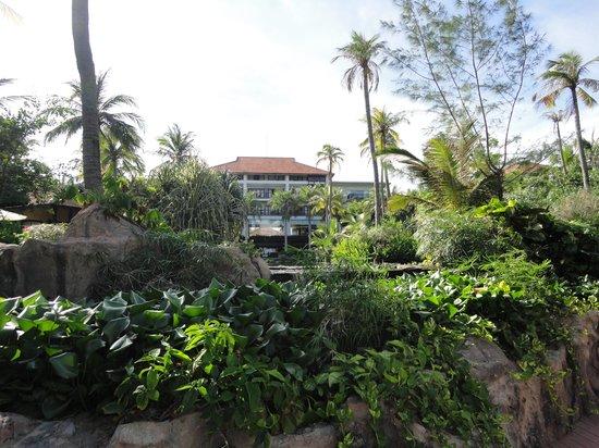 Anantara Mui Ne Resort: View from pool towards the hotel