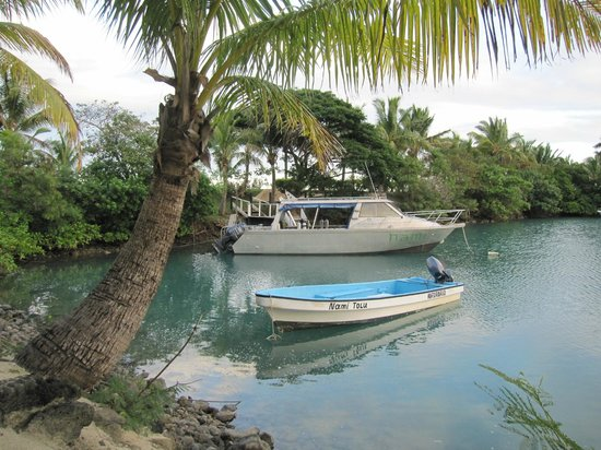 Wananavu Beach Resort: Marina and Dive Boat