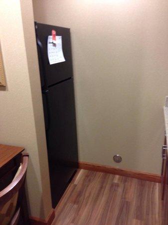 Homewood Suites Rochester - Victor: Medium fridge