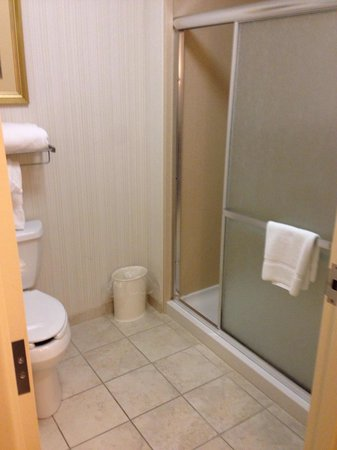 Homewood Suites Rochester - Victor: Roomy bathroom/shower.
