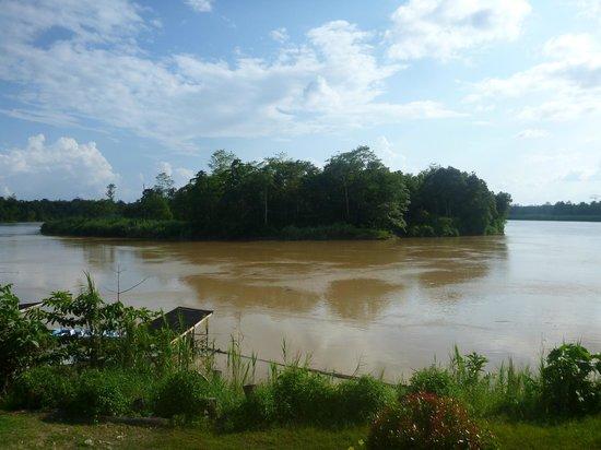 Myne Resort: View from deck