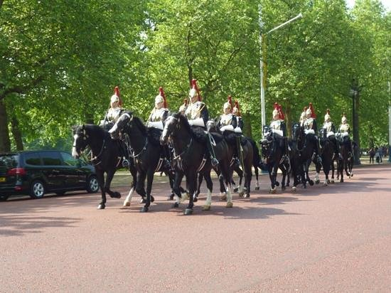 The Original London Sightseeing Tour : Getting ready for changing of the horse guard