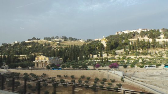 Sharm Life Day Tours: Jerusalem panorama.
