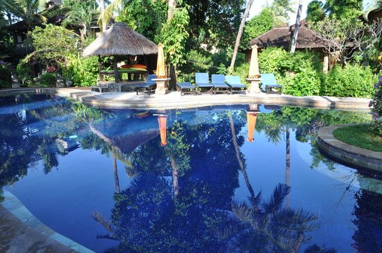Rambutan Boutique Hotel : Main pool area