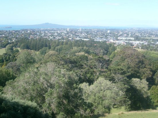 One Tree Hill (Maungakiekie) : View
