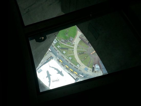 Glass floor view picture of cn tower toronto tripadvisor for How many floors in the cn tower