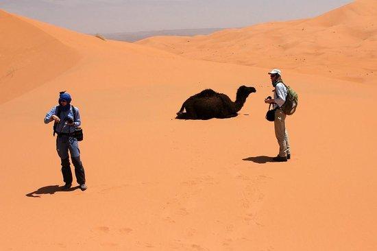 Merzouga Desert: Morocco, Sahara desert, Merzouga, Erg Chebbi