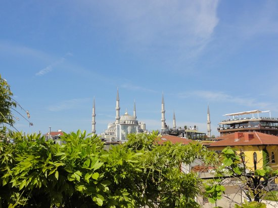 Hotel Empress Zoe: View of Blue Mosque from rooftop