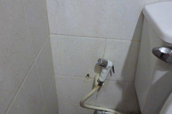 Ayothaya Riverside Hotel : สายฉีดห้องน้ำมีราขึ้น