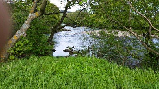 The beautiful river tees at leekworth caravan park.