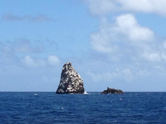 Sea Saba Advanced Dive Center : Diamond Rock