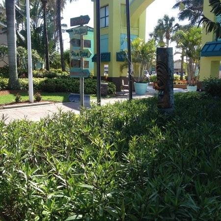International Palms Resort & Conference Center Cocoa Beach: The hotel grounds