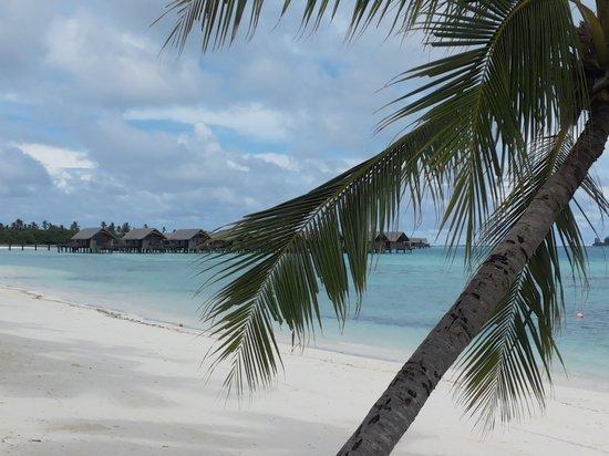 Shangri-La's Villingili Resort and Spa Maldives : Villingili Resort and watervillas