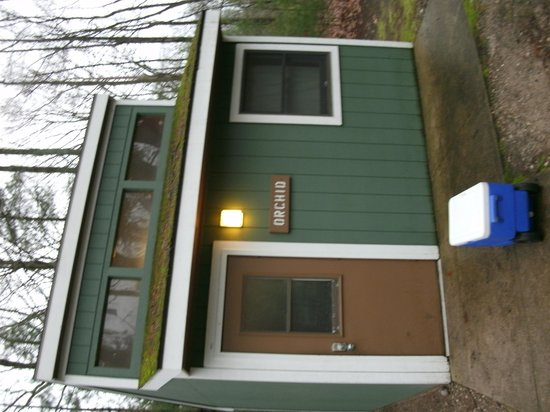 Petoskey State Park: Orchid camping cabin