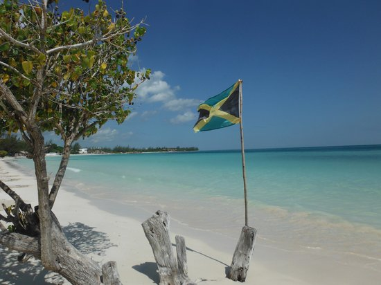 Jamaican Flag On Beach Picture Of Royalton White Sands Resort Falmouth Tripadvisor