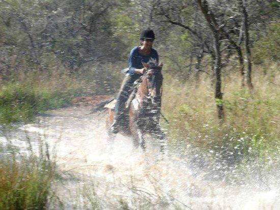 Horizon Horseback Adventures Lodge: Having a splashing time