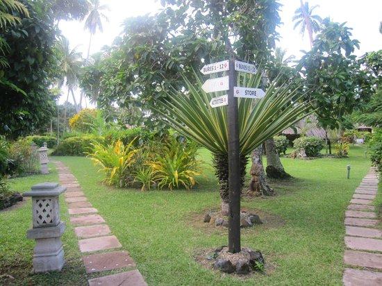 Beqa Lagoon Resort : Path to the Bures