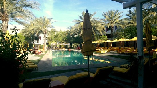 Saguaro Scottsdale: Pool