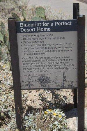 Red Hills Visitor Center : Desert Home Blueprint