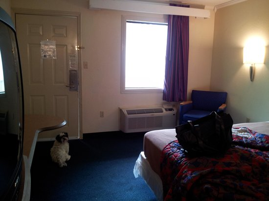 Motel 6 Gatlinburg Smoky Mountains : room