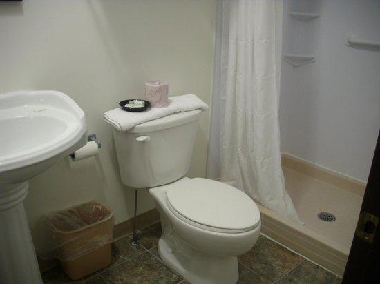 Moonlight Inn And Suites Sudbury : Bathroom 122