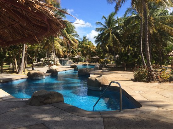 Palm Island Resort & Spa : Poolside