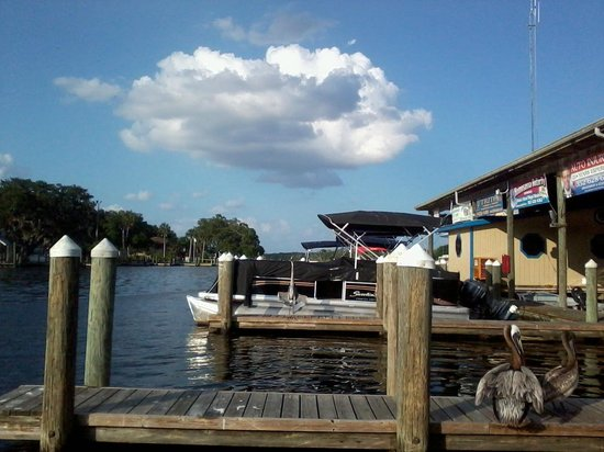 MacRae's of Homosassa: The Shed and Dock